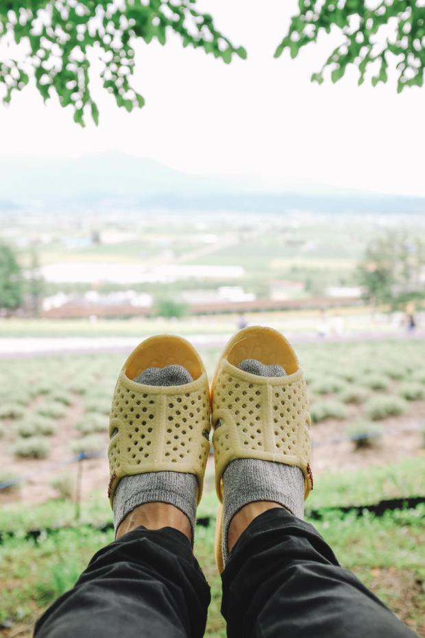 Ngồi trên đồi Trại hoa Tomita nổi tiếng… Thánh tổ ong tái xuất với bộ ảnh mới tại miền Bắc nước Nhật xinh đẹp