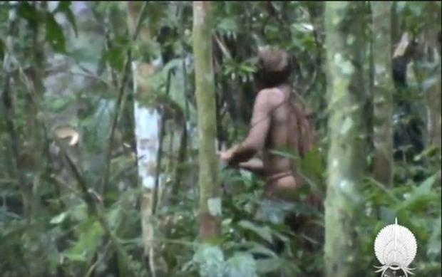 Gần đây, những thông tin về thành viên cuối cùng còn sót lại của một bộ lạc vẫn sống biệt lập trong rừng sâu đã gây xôn xao dư luận. Ảnh: Odditycentral