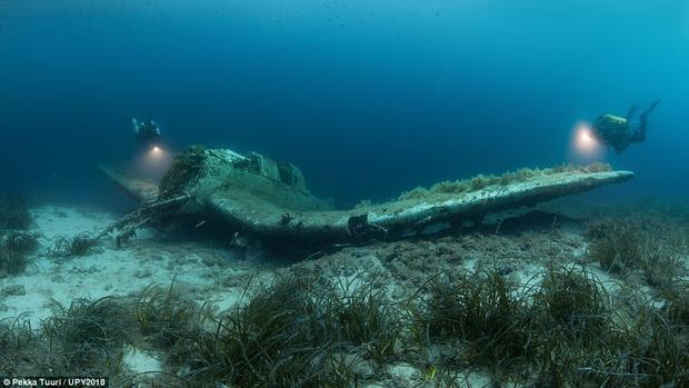 Pekka Tuuri, đến từ Phần Lan, chụp lại hình ảnh một chiếc máy bay chìm dưới độ sâu 23 m, gần Kornati, Croatia.