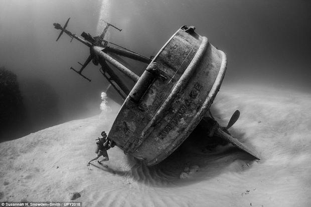 """Con tàu đắm dài tới 76 m được chụp bởi nhiếp ảnh gia Susannah H. Snowden-Smith. Con tàu này """"đứng"""" thẳng trong nhiều năm, cho đến ngày 8/10/201, cơn bão Nate ập đến, khiến nó bị đổ nghiêng."""