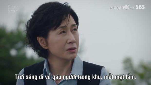 Những phát hiện thú vị về phim Thẩm phán giả mạo của Yoon Si Yoon cùng mối liên quan đến Thư ký Kim và Quý cô Hammurabi
