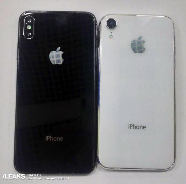 Chiếc iPhone X Plus (6,5 inch) và iPhone (6,1 inch) cùng rò rỉ trong một hình ảnh.