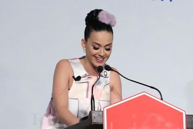 Katy Perry xuất hiện tại Việt Nam hồi năm 2015 với vai trò đại sứ thiện chí.
