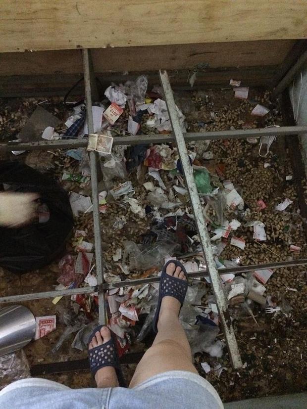 Gầm giường ngập ngụa rác thải của 2 cô gái khiến bao người hết hồn. Kinh hoàng với 'siêu phẩm' ở bẩn của 2 cô gái xinh đẹp, gầm giường không khác gì bãi rác thành phố