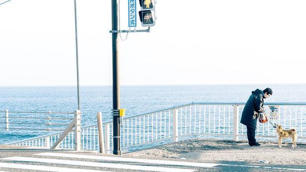 Có một thành phố ven biển vô cùng an yên ở Nhật Bản, nơi mà mọi thứ đẹp như một bộ phim