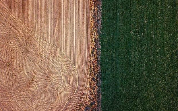 New South Wales là nơi đông dân nhất nước Úc và đóng góp 1/4 sản lượng nông nghiệp Úc, nhưng hạn hán khiến ngành nông nghiệp gặp khó khăn.