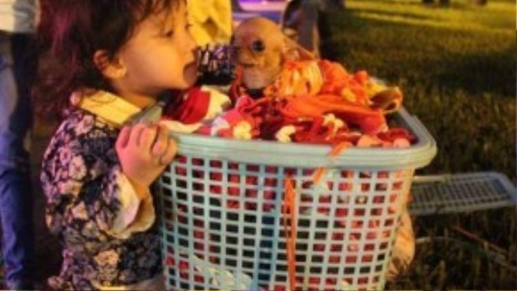 """Những lúc có khách cũng là dịp để bé Trúc """"trò chuyện"""" với những chú cún dễ thương này"""