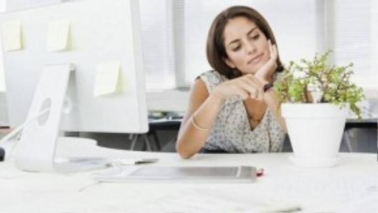 Việc đặt cây cảnh trong phòng làm việc cá nhân sẽ mang lại những hiệu quả khác nhau, do đó cần nghiên cứu kĩ trước khi quyết định.