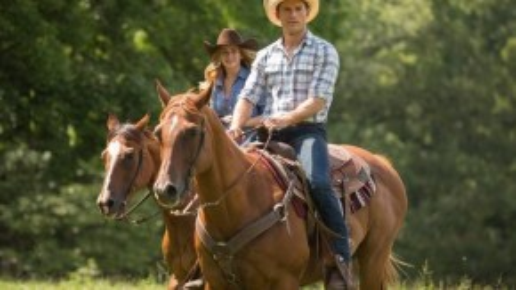 Scott Eastwood được biết đến rộng rãi với vai diễnLuke Collins trong bộ phim tình cảm The Longest Ride. Scott còn xuất hiện trong bộ phim bom tấnSuicide Squad sắp ra mắt.