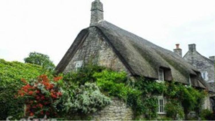 Căn nhà cổ bằng đá, dây leo phủ kín vách với mái bằng rơm