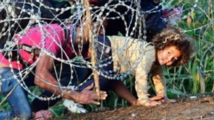 Trước đó, Bộ Quốc phòng Hungary cho biết đã hoàn tất việc dựng hàng rào dây thép gai dọc biên giới nước này với Serbia, nhưng nhiều người vẫn chấp nhận mạo hiểm để chui qua.