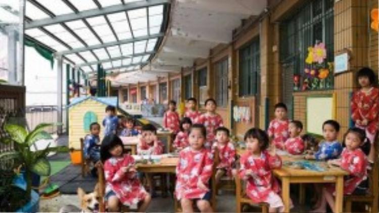 Các bé gái Đài Loan duyên dáng trong bộ đồng phục váy hoa, có kiểu dáng cách điệu từ chiếc sườn xám.