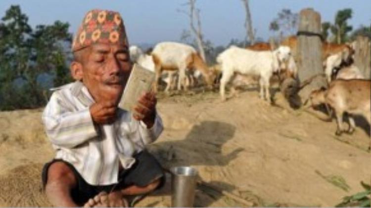 Ông Dangi, người đàn ông thấp nhất thế giới vừa qua đời ở tuổi 75 vì căn bệnh viêm phổi