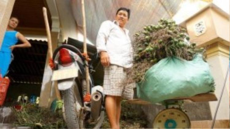 Mỗi ngày cơ sở của ông Sinh thu mua ước chừng 1,5 tấn cau và chỉ mua cau non. Theo ông Sinh, mùa cau cao điểm vào tháng 8 âm lịch. Năm ngoái, giá cau chỉ bằng 1/3 so với năm nay.