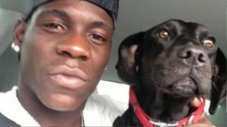 Chú chó giống Labrador mang tên Lucy rất thân thiết cùng cậu chủ.