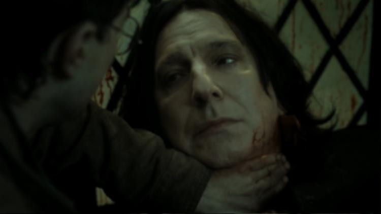 Người giết: Trường sinh linh giá của Voldermort.