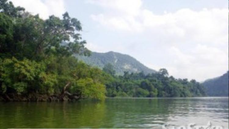 """Cảnh quan địa chất và sinh học của hồ Ba Bể rất độc đáo, đa dạng. Đây cũng là """"ngôi nhà chung"""" của nhiềuloài động thực vật quý hiếm, được ghi vào Sách Đỏ của Việt Nam và thế giới."""