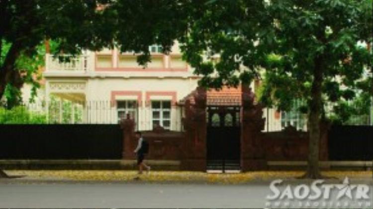 Đường đi học trải thảm lá vàng trên phố Ngô Quyền…
