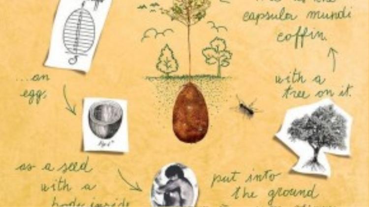 Hoạt động của vỏ bọc hữu cơ dùng để chôn cất người chết. Ảnh: Earth Porm