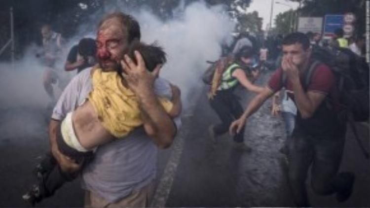 Một người đàn ông tị nạn ôm con chạy trốn trong cuộc bạo loạn ở biên giới Hungary ngày 16/09. Hàng trăm tị dân đã hò nhau xô đẩy hàng rào thép ngăn cách biên giới Hungary-Serbia đòi tiến vào lãnh thổ Châu Âu. Cảnh sát Hungary đã phải dùng vòi rồng và hơi cay để trấn áp những kẻ quá khích.