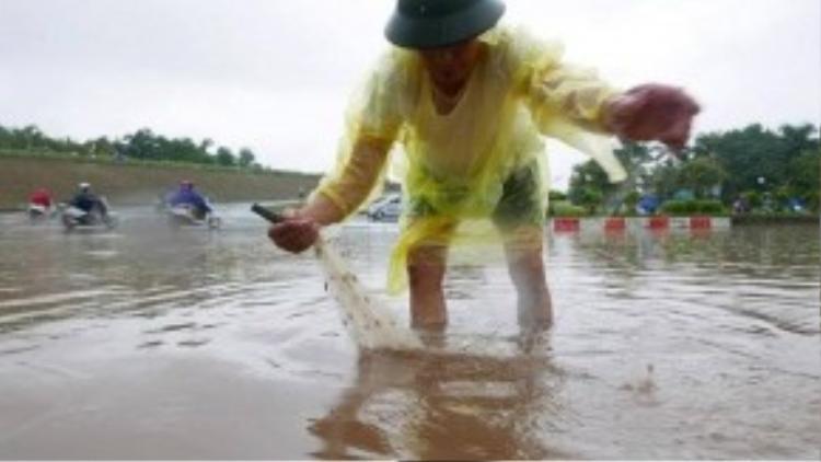 Quận Long Biên, Hà Nội là nơi ngập mưa nặng nhất. Ông Nguyễn Khánh, 64 tuổi, ở phường Bồ Đề (Long Biên, Hà Nội) tranh thủ mang lưới ra phố bắt cá. (Ảnh: Vnexpress)