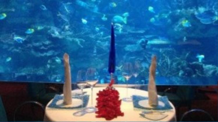 Các bàn ăn nhỏ dành cho hai người được đặt quanh một bể thủy sinh khổng lồ.