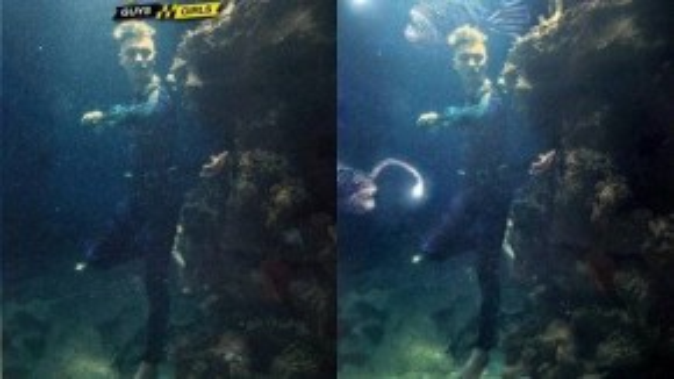 Những sinh vật biển được Hiếu thêm vào khiến bức hình trở nên sinh động hơn.