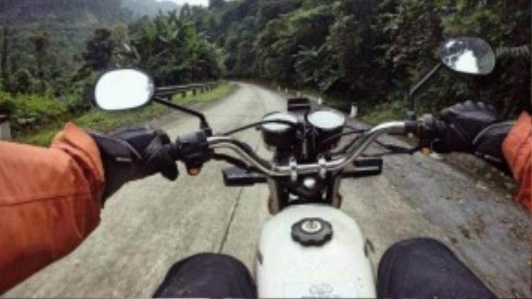 Chào mừng đến rừng xanh và hãy để xe motor của bạn vượt qua.