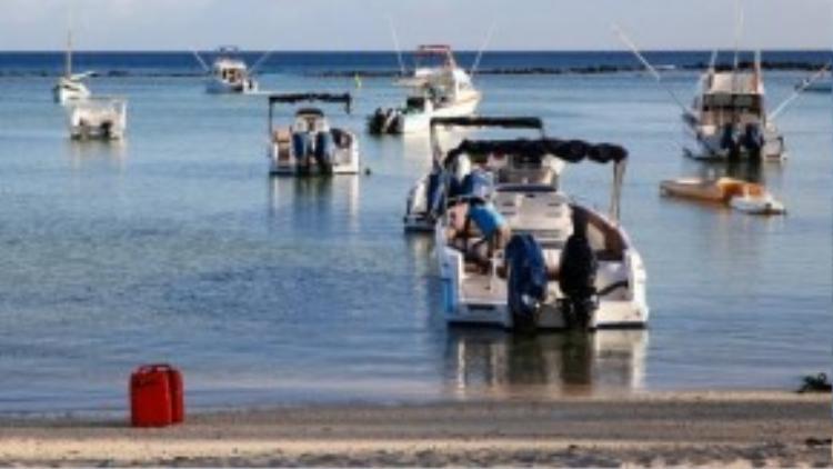 Nằm ở tây nam Ấn Độ Dương, gần Madagascar, quốc đảo Mauritus được mệnh danh là thiên đường mới của du lịch. Bơi cùng cá heo trên biển đang là một trong những tour thu hút khách nơi này.