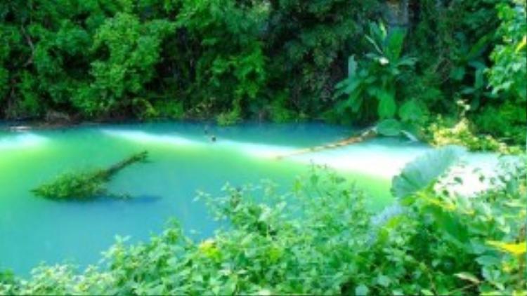 Thuộc địa phận hai tỉnh, mặc dù nằm rất gần thác Dray Sáp và đã được đầu tư đường nhựa dẫn đến tận nơi, việc khai thác du lịch ở thác Gia Long vẫn chưa được đầu tư đúng mức, bị du khách lãng quên. Tới đây bạn sẽ ngỡ như mình vừa lạc vào rừng rậm Amazon.