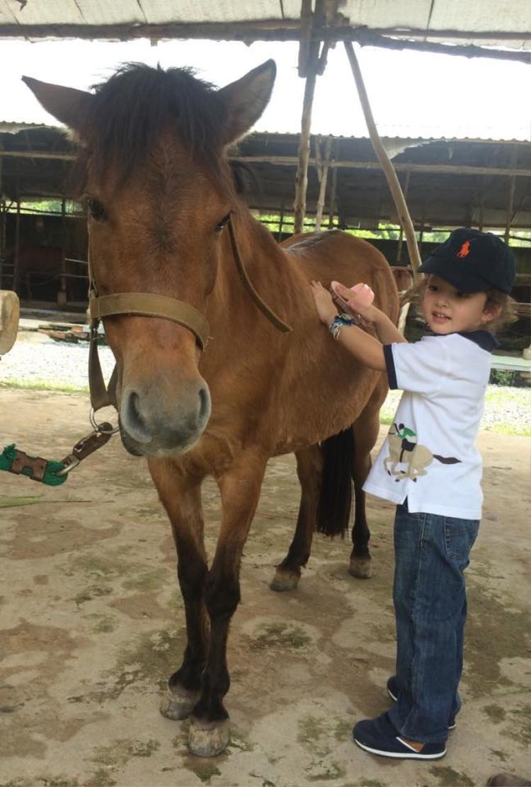 Hồng Nhung khoe ảnh lần đầu 2 con lai tập cưỡi ngựa