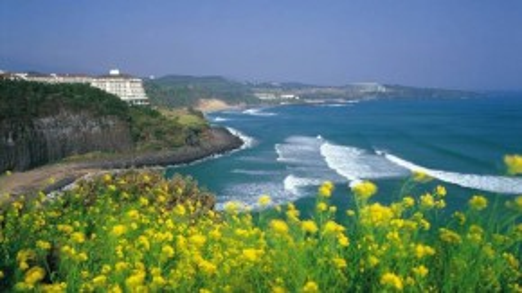 Đảo Jeju
