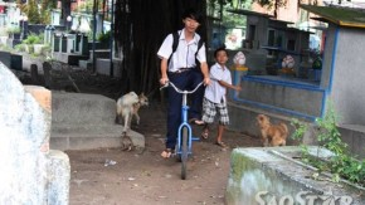 5 giờ chiều Đức cũng bắt đầu về. Tuy bị yếu tay, chân nhưng em vẫn cố gắng tự đạp xe đi đến trường.