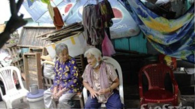 """Căn lều xập xệ là """"nhà"""" duy nhất của ba bà cụ khi tuổi đã xế chiều."""