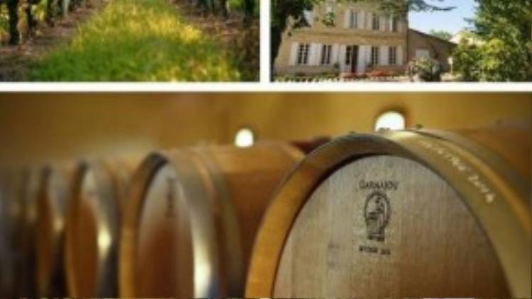 Trang trại rượu ở Pháp của vợ chồng Én nhỏ.
