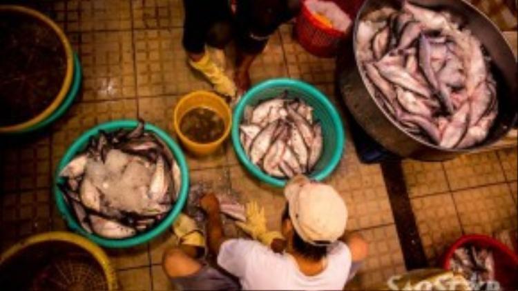 Cá tươi đang được sơ chế rửa sạch bùn đất trước khi bày bán cho khách.