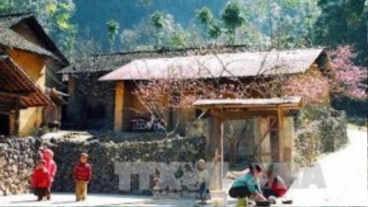 Nếp nhà mới dựng của một gia đình người Mông ở bản Lũng Cẩm, xã Sủng Là, huyện Đồng Văn chuẩn bị đón Xuân về. Ảnh: Văn Phát - TTXVN.