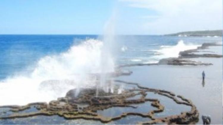 Anh may mắn được quan sát các lỗ phụt nổi tiếng ở Tonga. Anh cho biết các con sóng đẩy nước qua các kênh ngầm nhỏ, tạo ra hiệu ứng nước phun trên mặt đất.