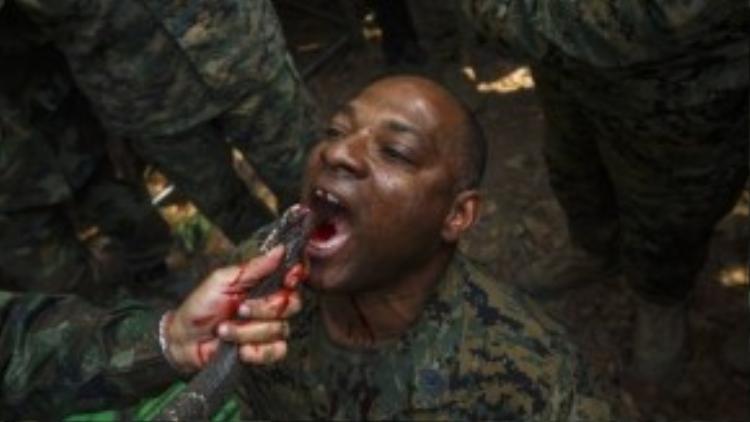 Một tập tục uống máu rắn hổ mang tại Thái Lan chắc chắn là kỷ niệm khó quên với binh sỹ người Mỹ này.