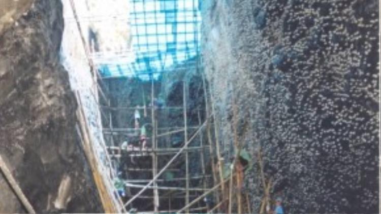 Việc khai thác tổ yến thiên nhiên tại Khánh Hòa được tổ chức quy củ dưới sự quản lý và giám sát chặt chẽ của chính quyền địa phương.