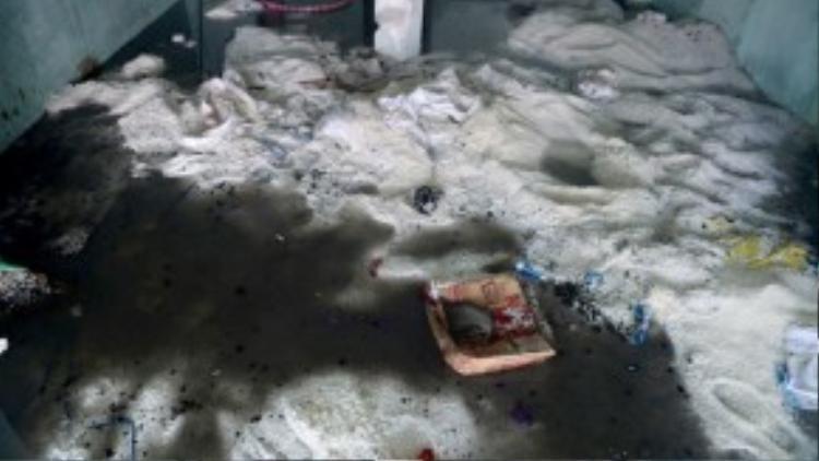 Hàng tấn gạo trong đám cháy bị ướt và nằm la liệt dưới bùn đất.
