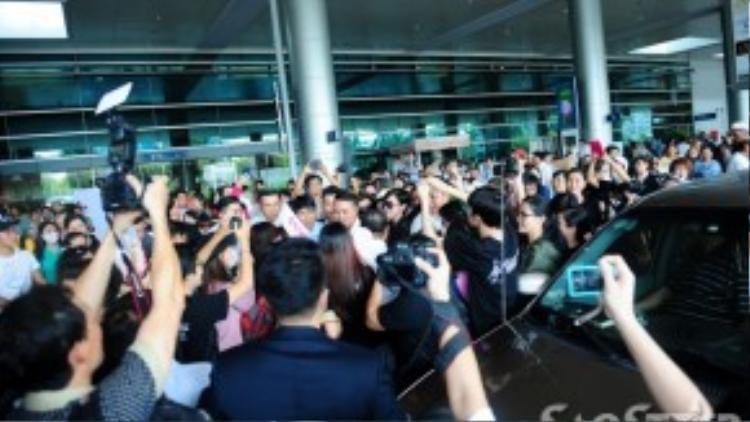 Ngôi sao TVB trong vòng vây của khán giả Việt.