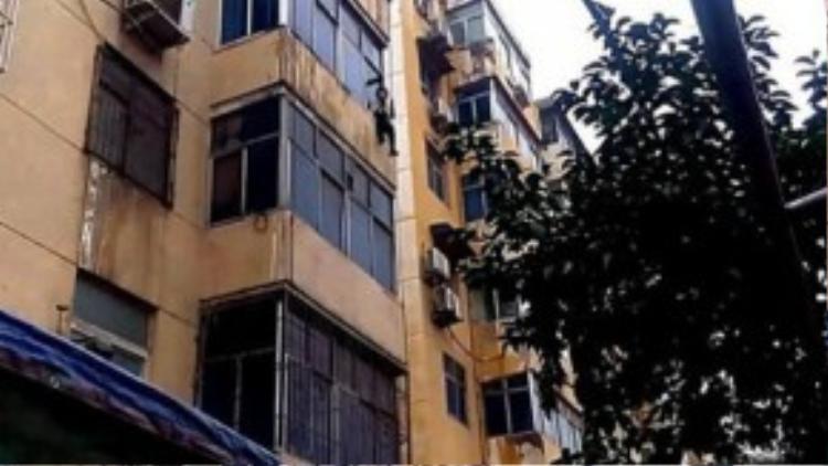 Người phụ nữ ngồi vắt vẻo trên cửa sổ tầng 4. Ảnh: People.com.cn.