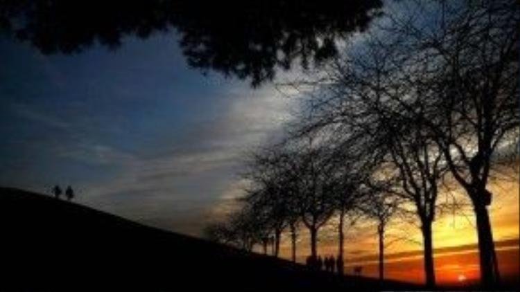 25/1: Người dân Tây Ban Nha dạo bộ trong công viên Tio Pio ở Madrid. Công viên này nổi tiếng vì nó là một địa điểm hoàn hảo để ngắm chân trời Tây Ban Nha rất đẹp đẽ và thơ mộng.