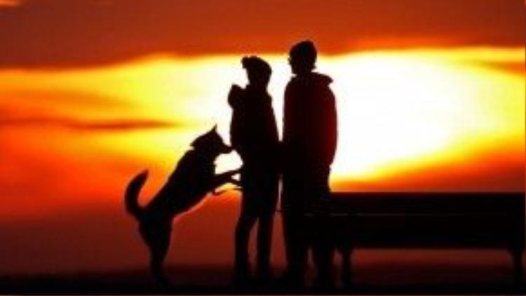 30/1: Một cặp đôi người Mỹ cùng chú chó của mình lặng ngắm hoàng hôn ở Portland.