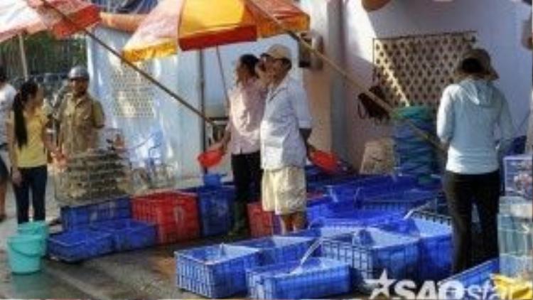 Người bán cá trước cửa chùa liên tục mời chào khách và Phật tử.