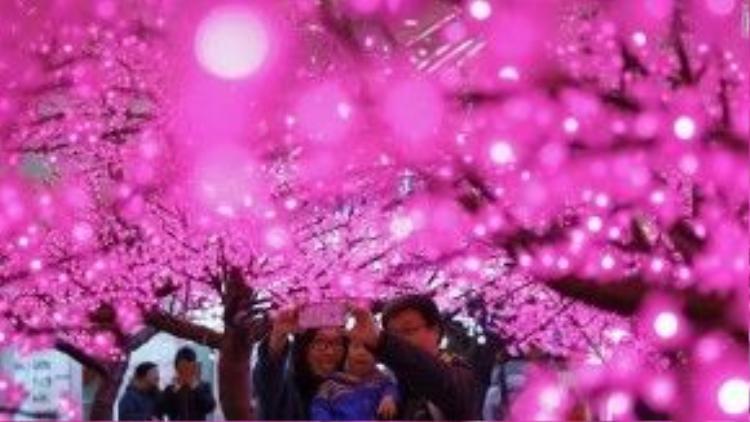 Gia đình hạnh phúc chụp ảnh cùng nhau dưới những cây hoa giả gắn đèn đẹp đẽ.