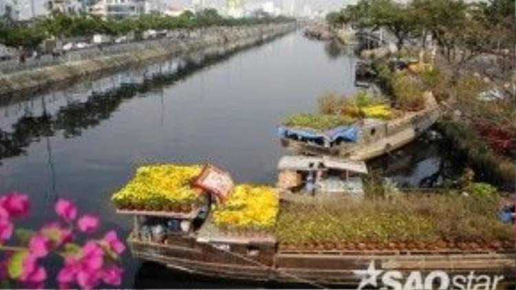 Mỗi dịp Tết về, những chiếc thuyền chở đầy hoa và cây kiểng từ miền Tây lại rủ nhau tụ hội về Bến Bình Đông.