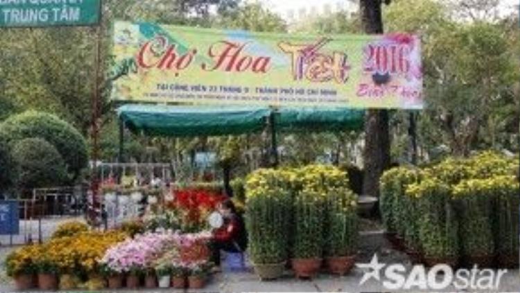 Chợ hoa Tết tổ chức thường niên tại công viên 23/9 đã mở cửa chào đón du khách từ ngày 1/2.