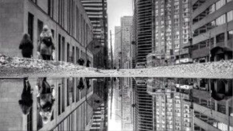 Chắc hẳn là sau khi xem bức ảnh này, các bạn sẽ nhìn vũng nước trên đường với con mắt hoàn toàn khác!